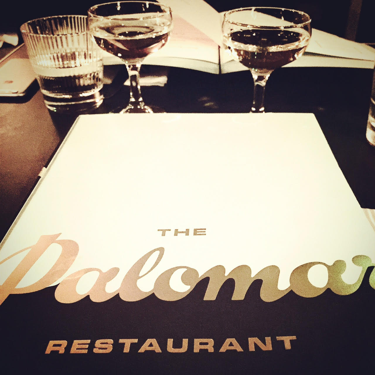 THE PALOMAR.jpg