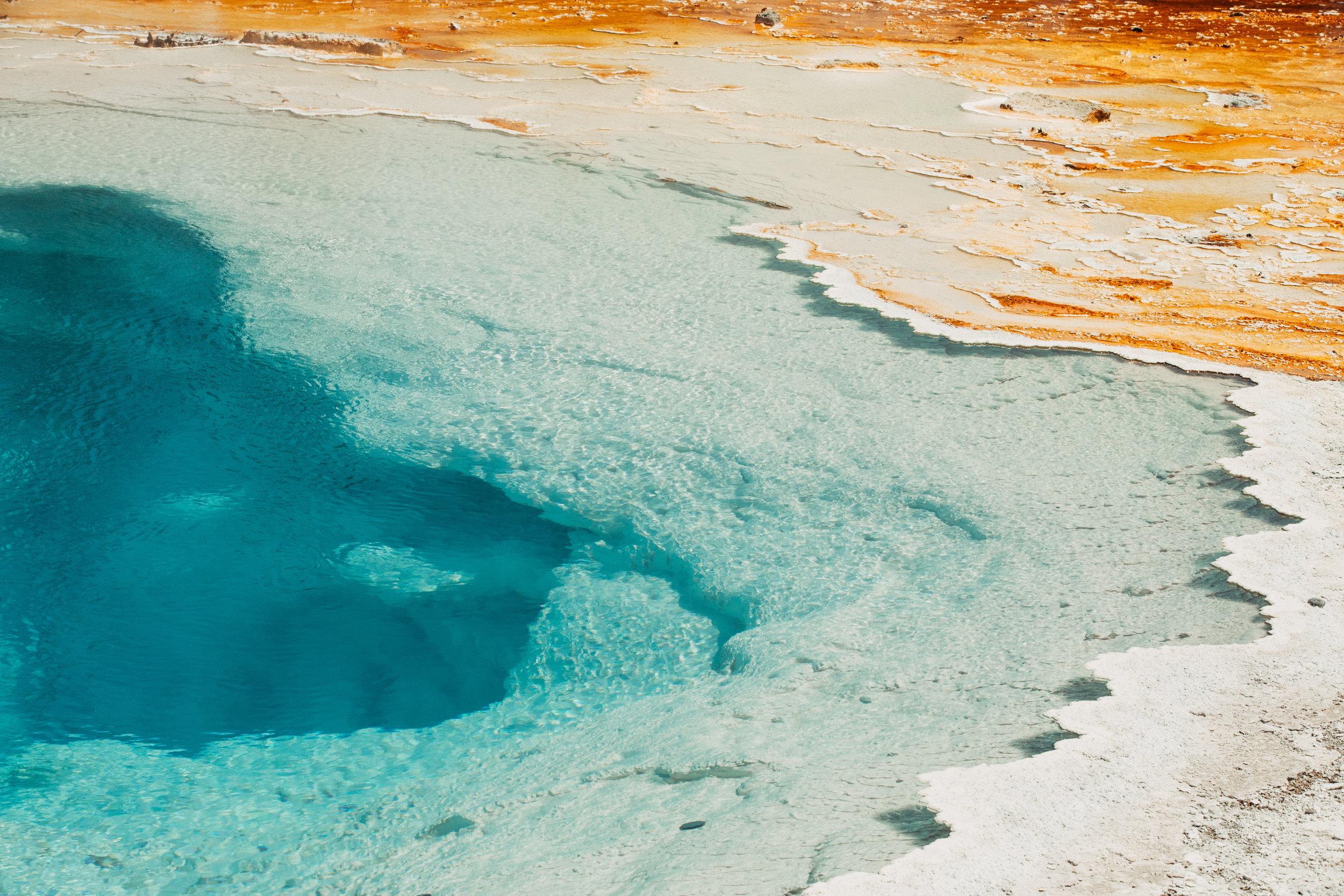 Yellowstone National Park_1-Shaylyn-Berntson.jpg