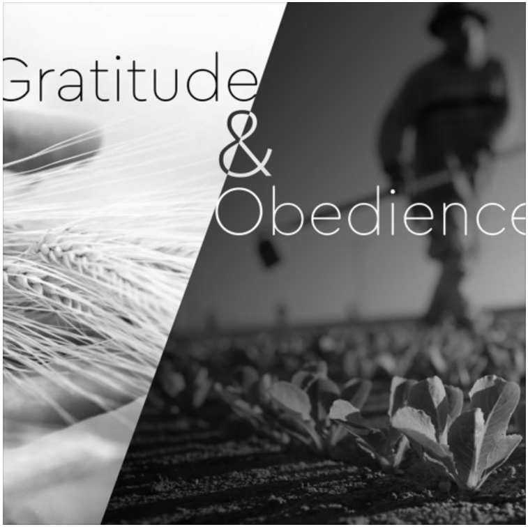 Gratitude and Obedience.PNG