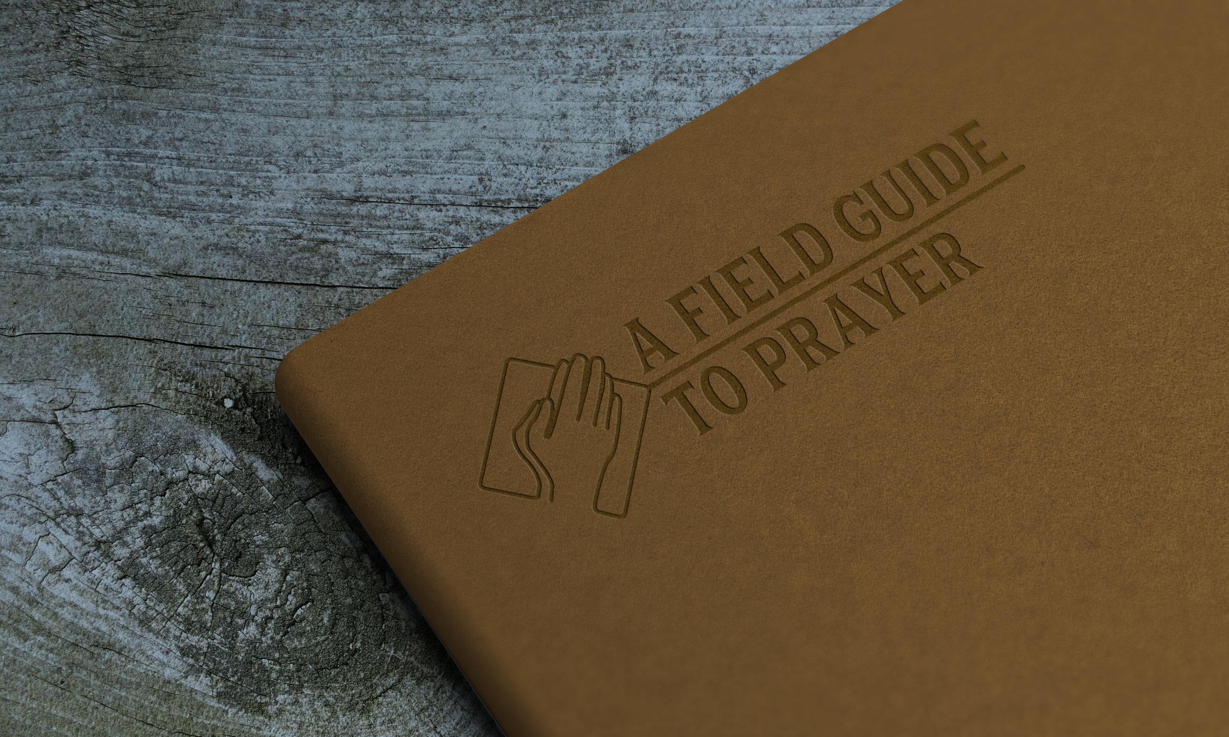 Field Guide 2.jpg