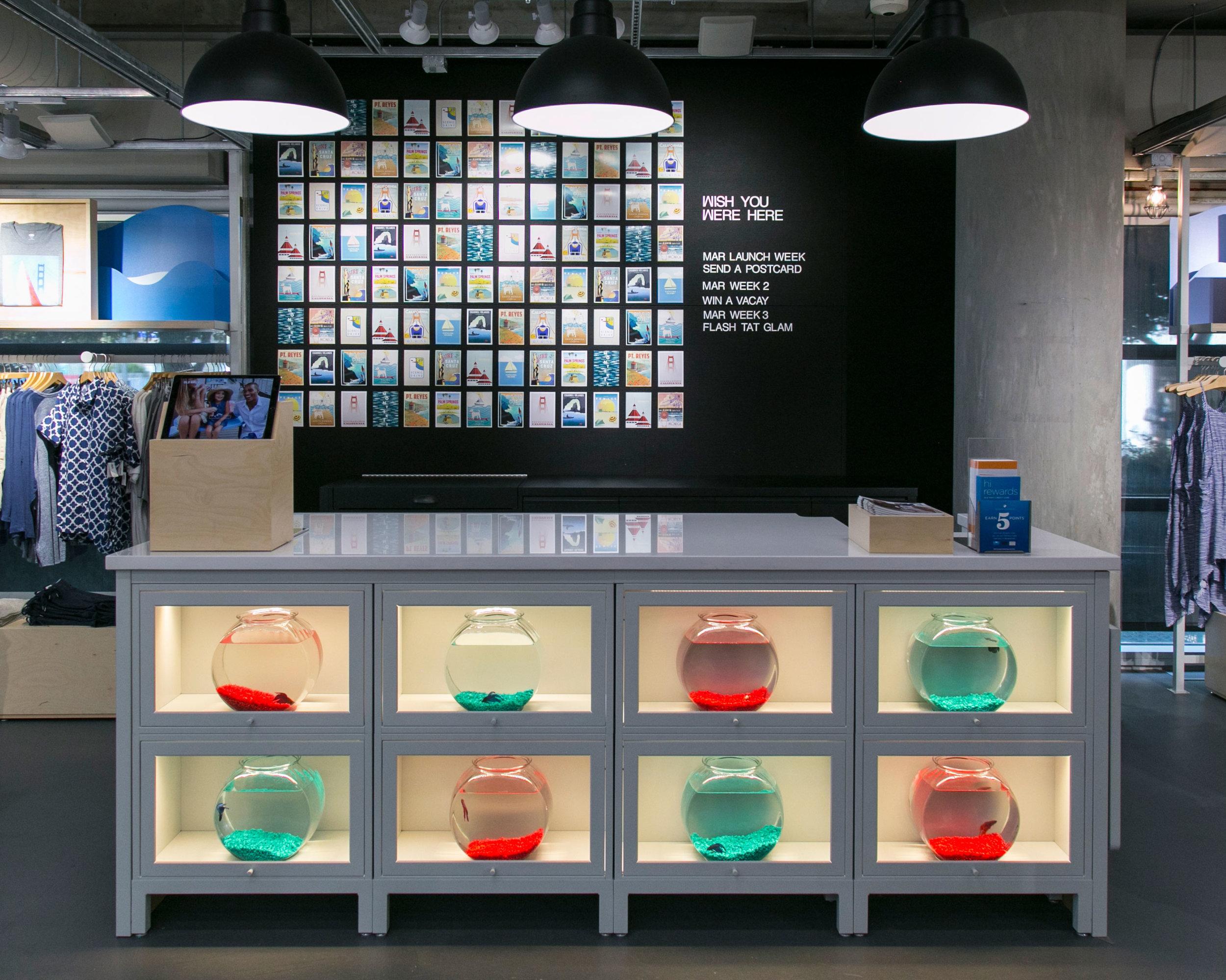 wall-of-goldfish.jpg