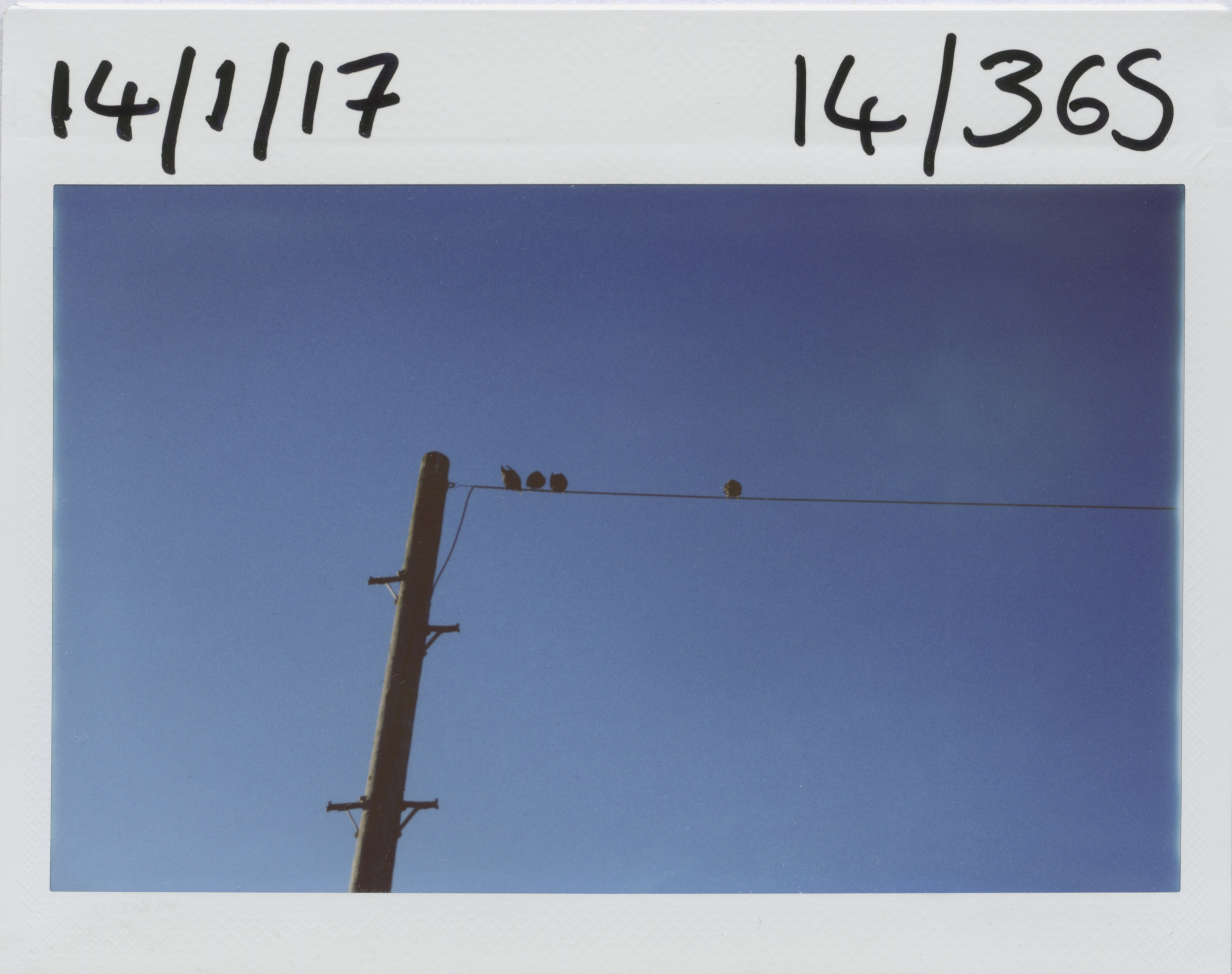 14.1.2017.jpg