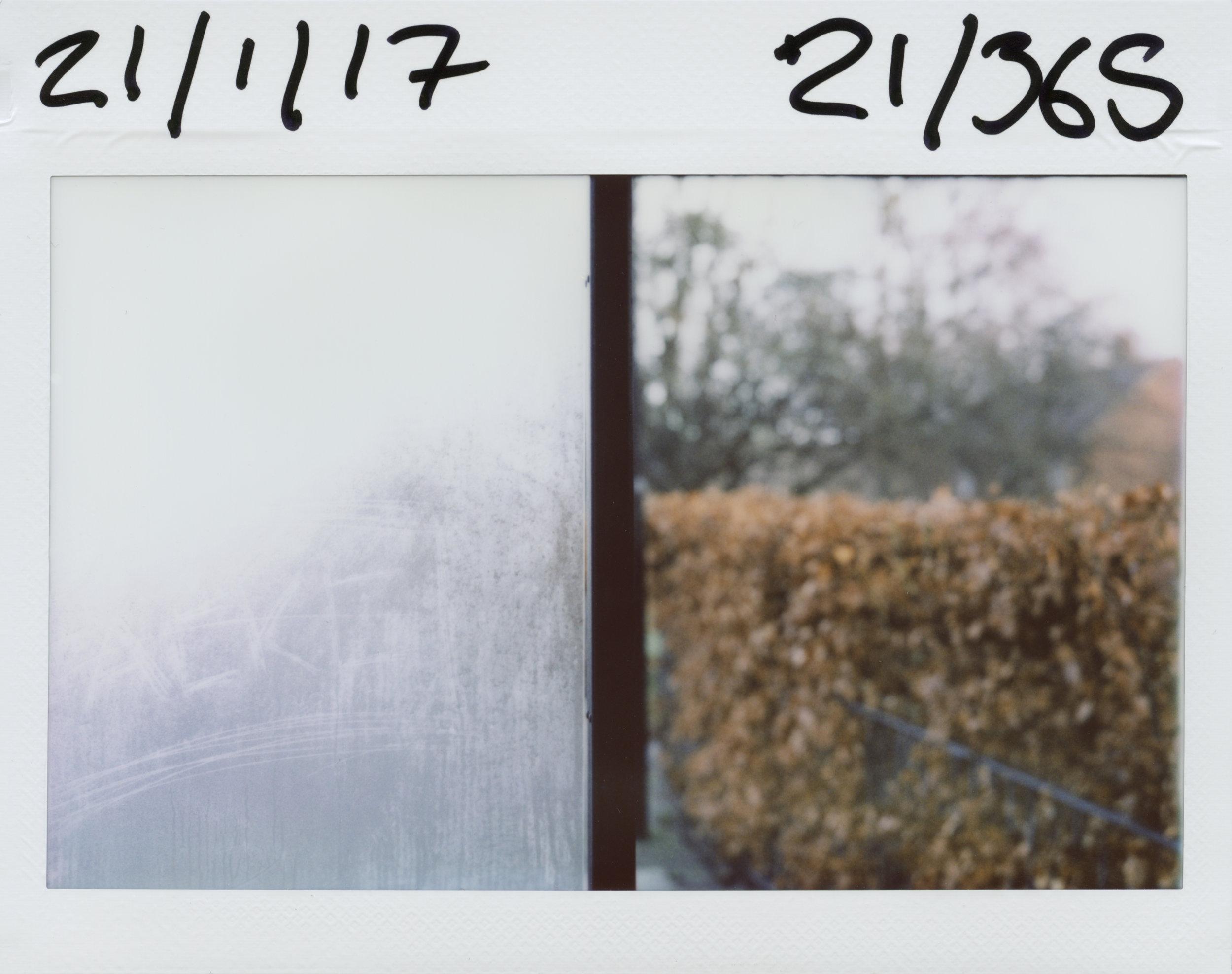 21.1.2017.jpg