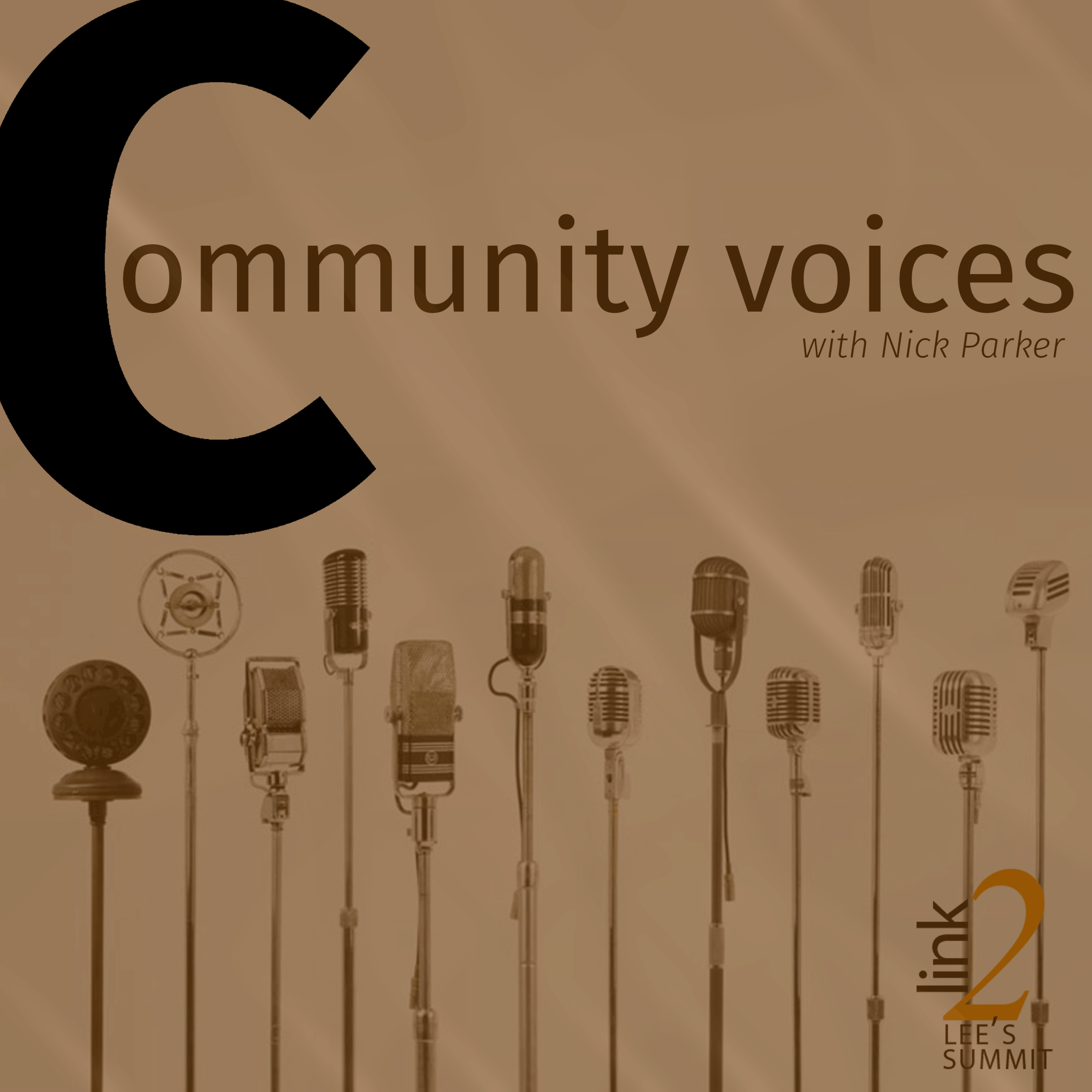 CommunityVoices.png