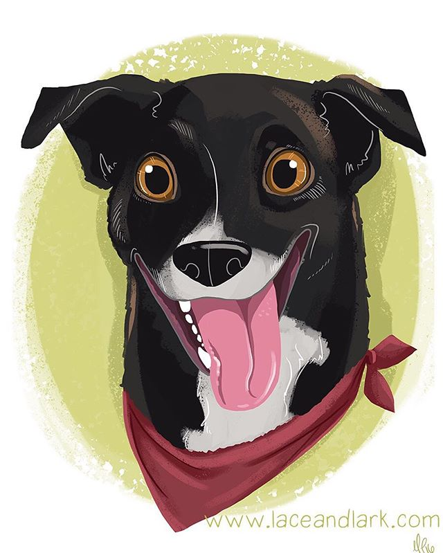 Love this portrait of Ellie! Face portraits are fun because they show so much personality!  Message me to begin a portrait for your pet or as a gift for a pet lover in your life!  #Instaart #art #illustration #instaartist #cartoon #cartoondog #azart #azartist #portrait #petportrait #dogsofinstagram