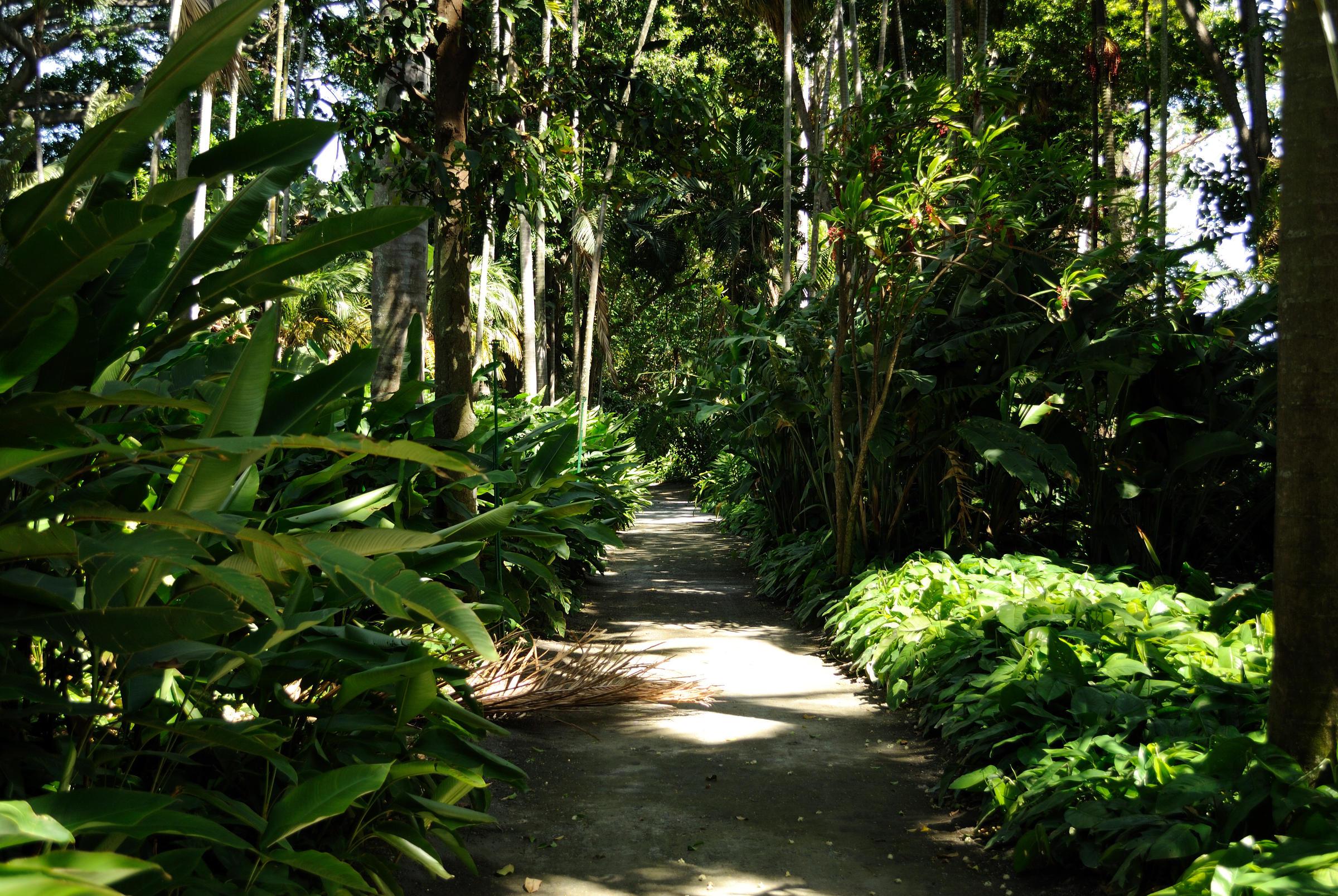 path___foster_botanical_garden__4720032668_.jpg
