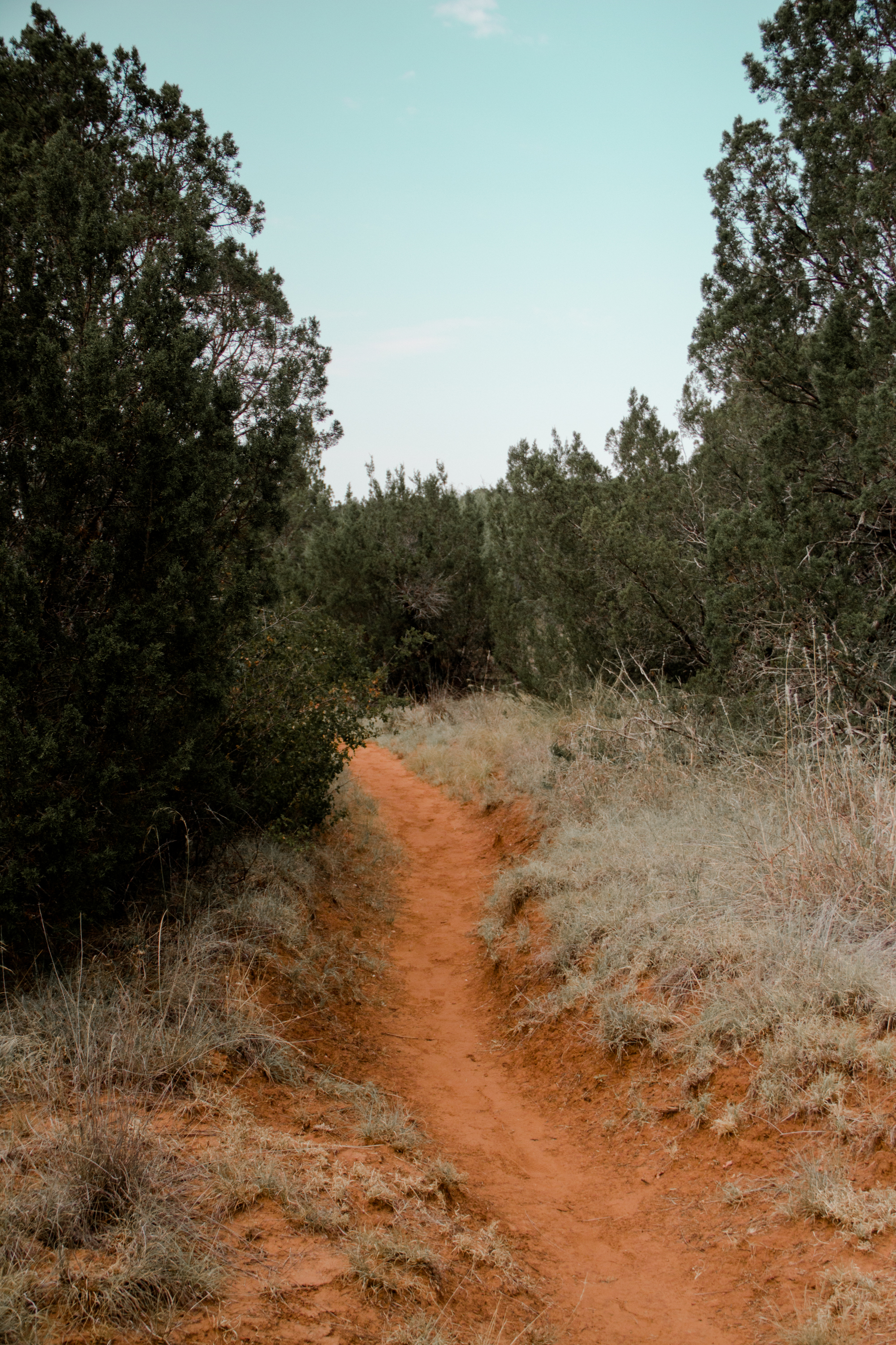 Copper Breaks State Park, Quanah, Texas, USA
