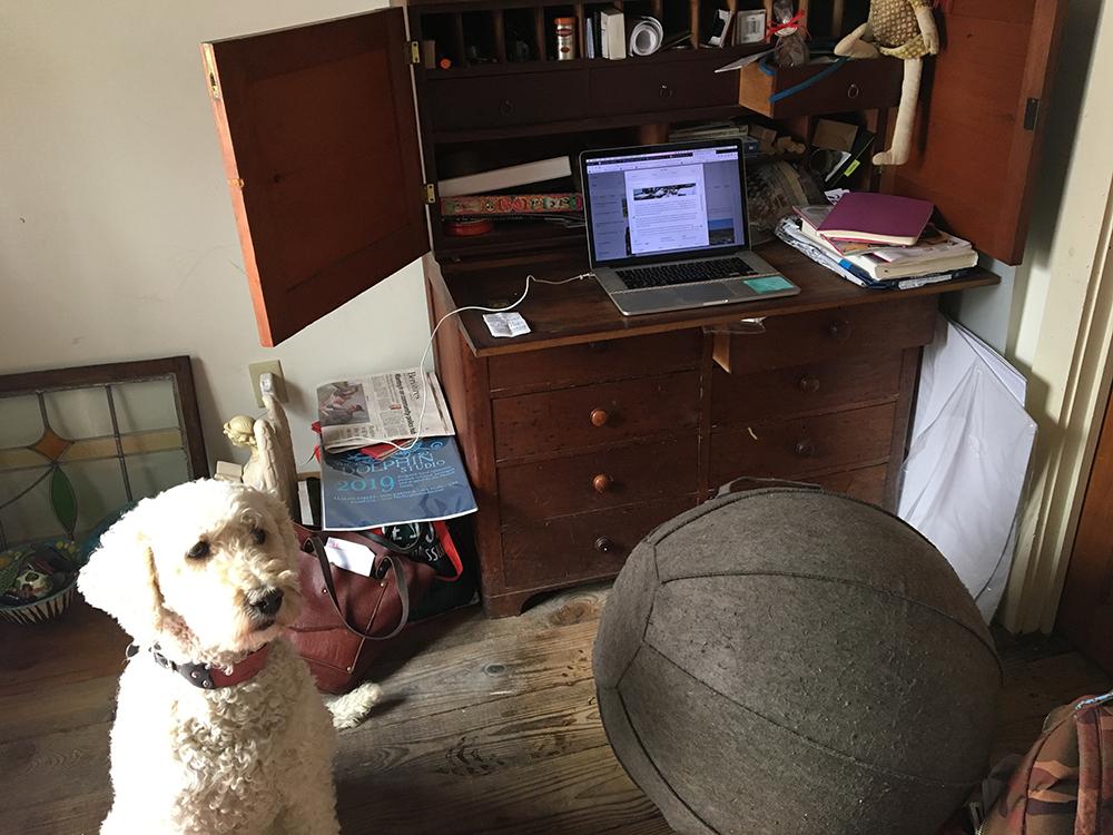 03.14.19 office.jpg