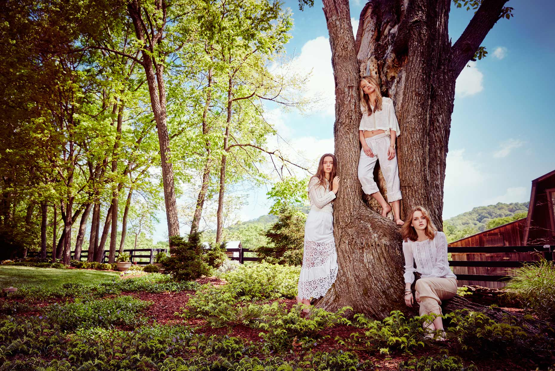 Three women modeling by large old tree in country - Mark DeLong: Fashion Gallery