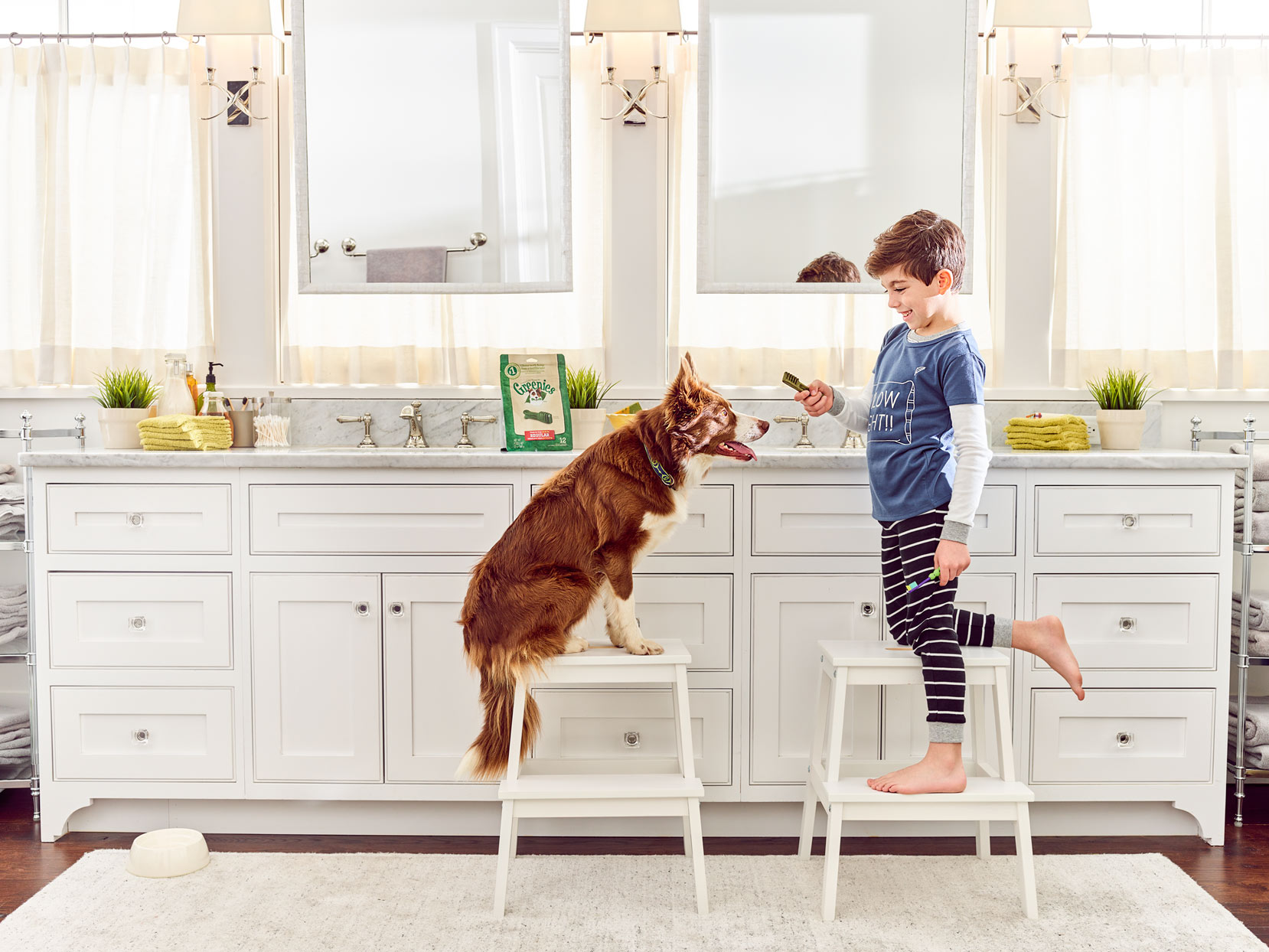 Mark DeLong - Commercial Photography - Seven year old boy sitting on a stool giving his brown dog a treat in the kitchen.