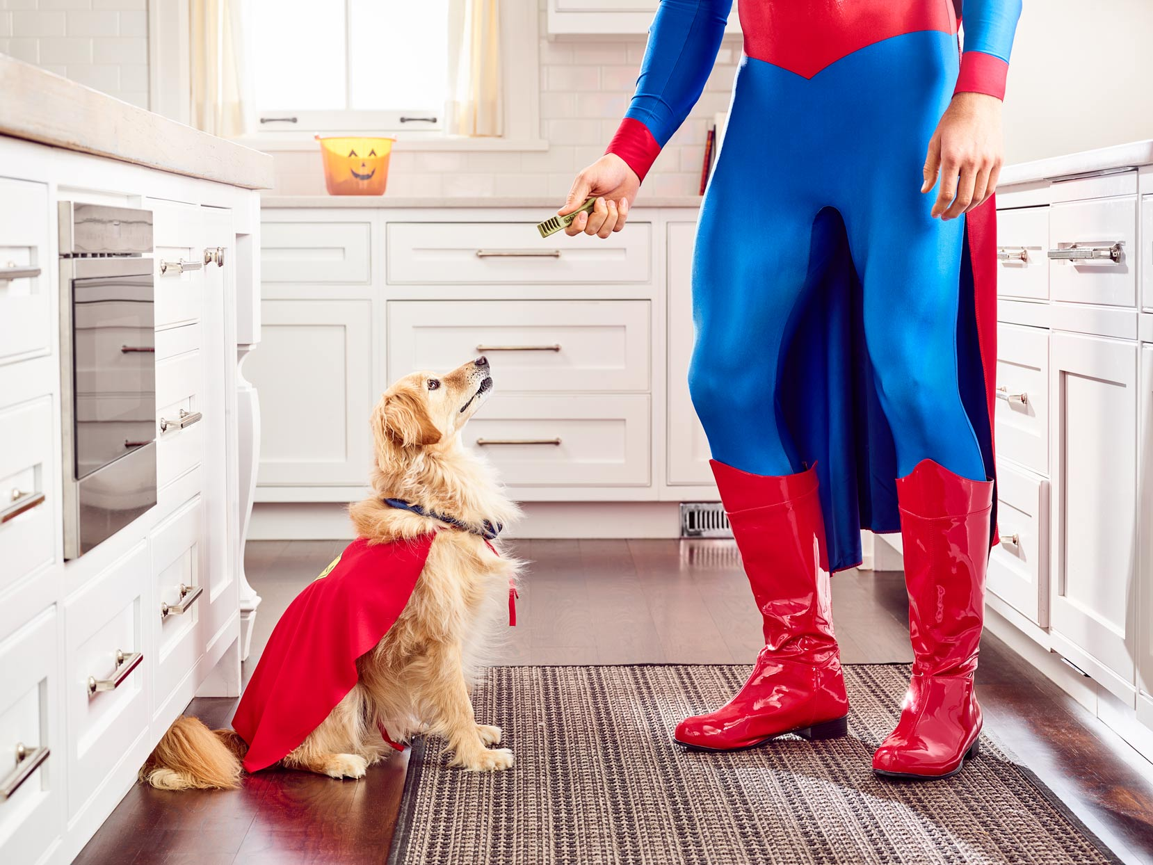 Mark DeLong - Commercial Photography - Man in red and blue superhero outfit gives a treat to his golden retriever in a red cape.