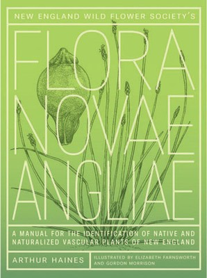 Flora Novae Angliae: A manual for the identification of native and naturalized higher vascular plants of New England  by Arthur Haines
