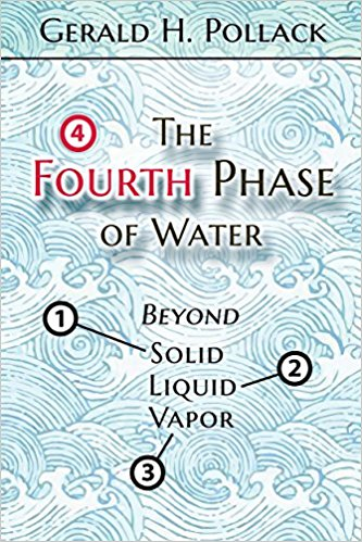 The Fourth Phase of Water: Beyond Solid Liquid, and Vapor  by Gerald H. Pollack