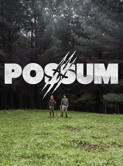 Possum (1).jpg