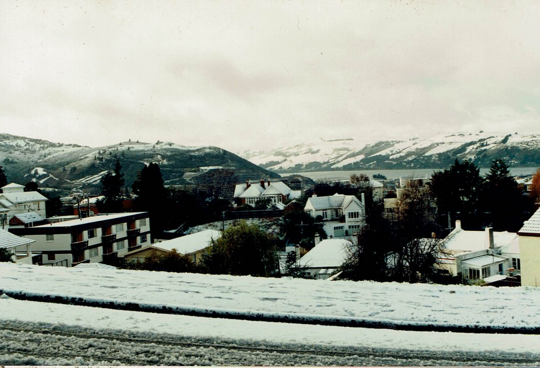 Dunedin in the SNOW!