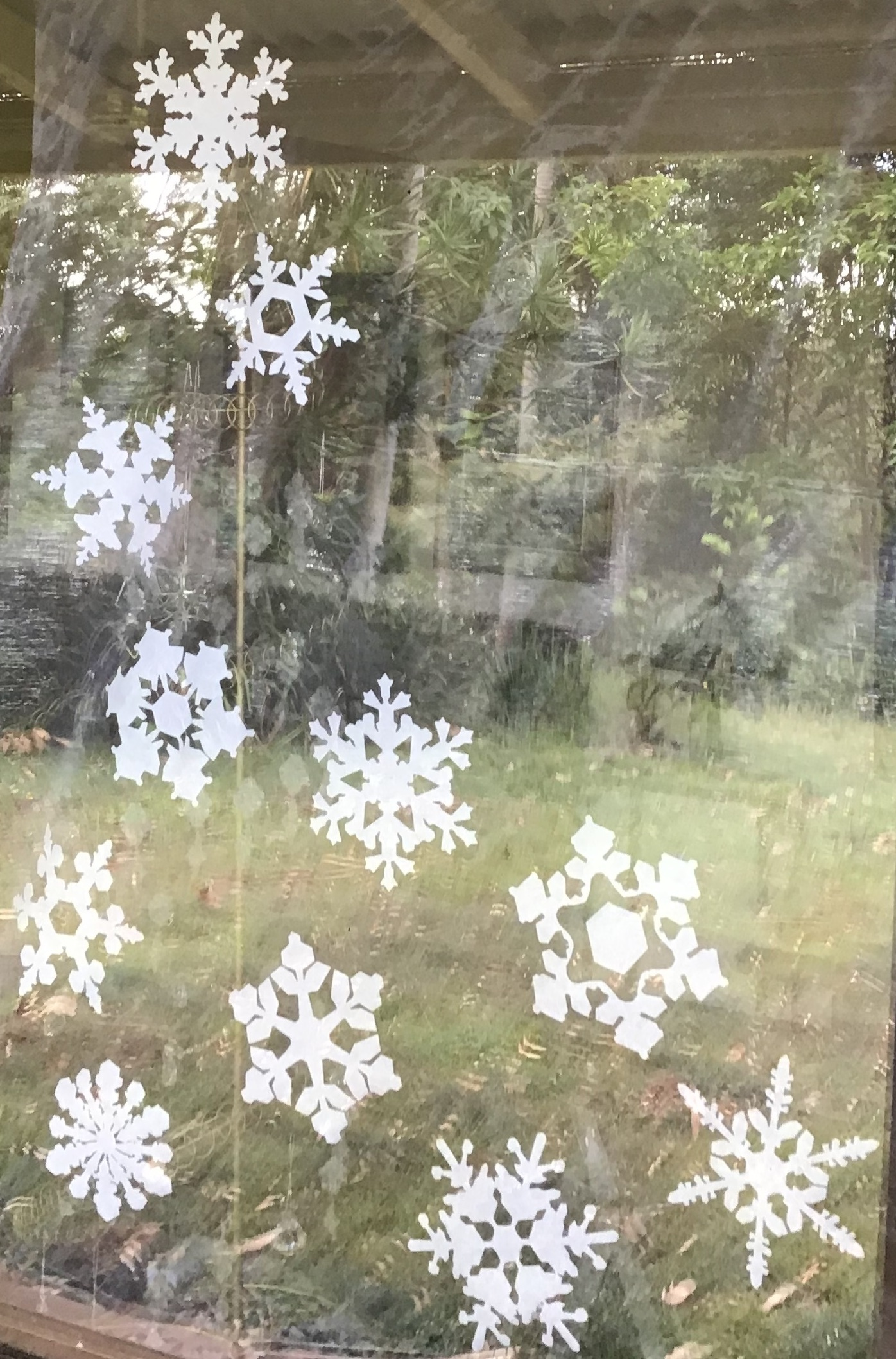 snowflakes when its 37°C (99°F)