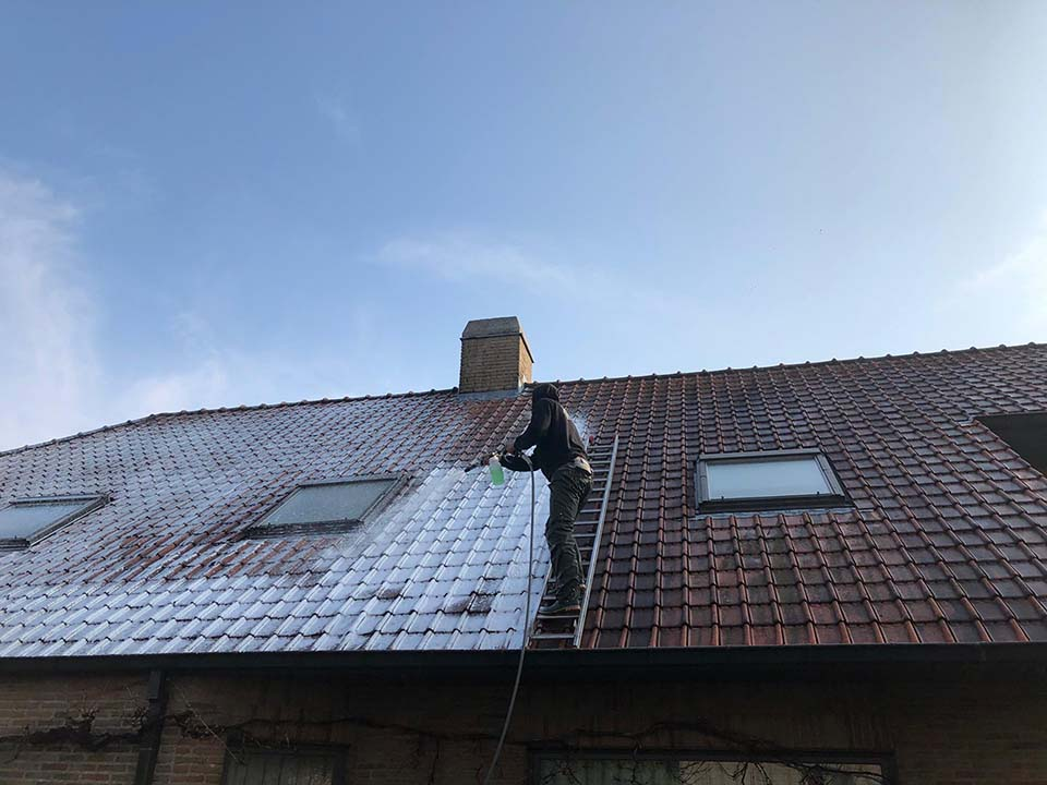 Reinigen dak - behandeling anti-mos.jpg