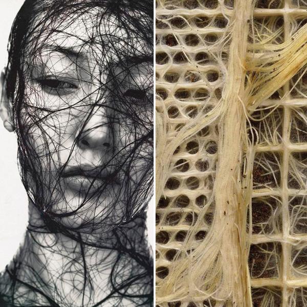 Left: Eric Traore | Right:  Diana Scherer