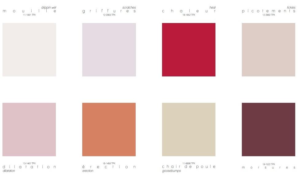 Euphoria Colour Direction