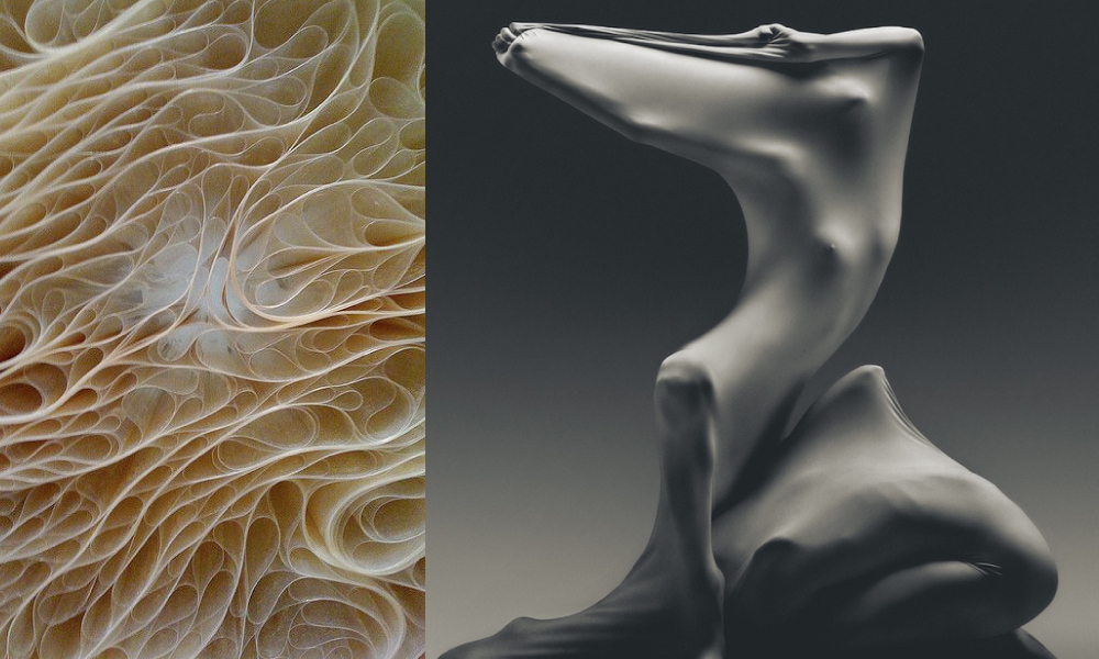 Images:  Jennifer Brook  | Vadim Stein