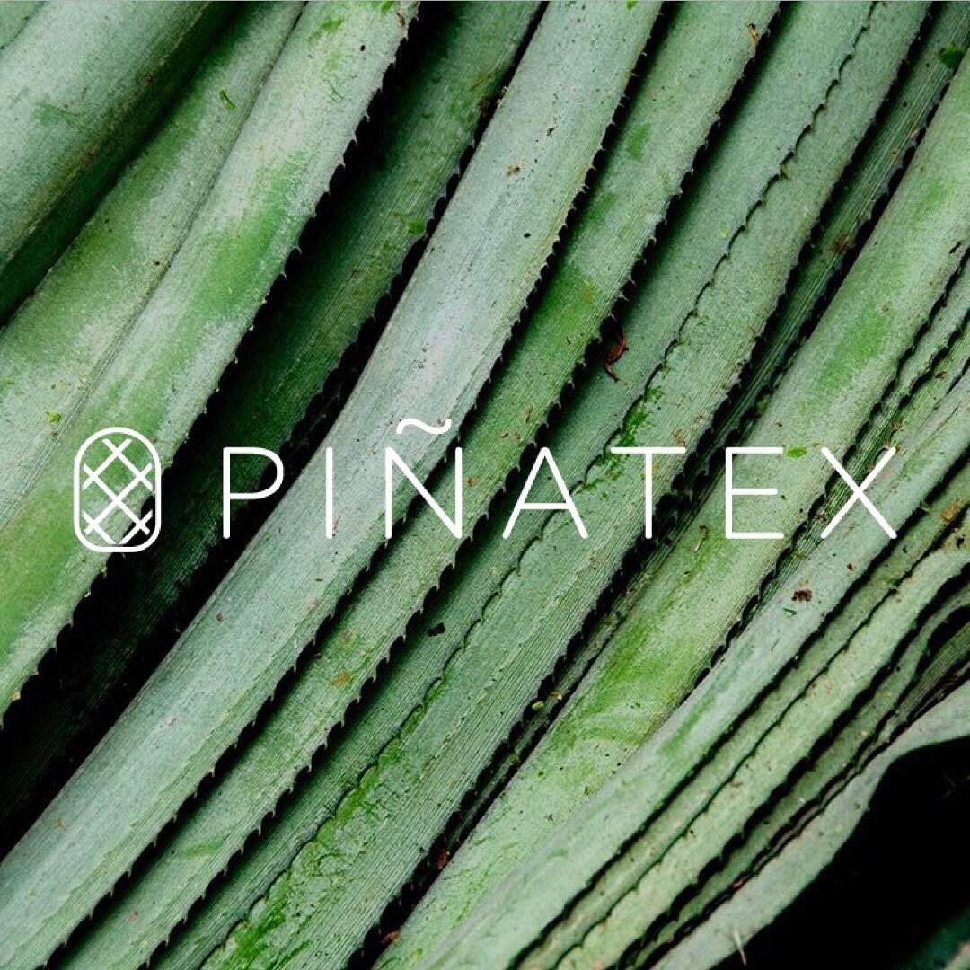 Piñatex® by Ananas Anam  Pineapple leaves provide the fibre for non woven textile Piñatex®