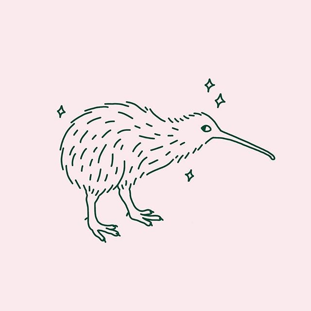 As if I wasn't going to draw a kiwi after visiting NZ. While we were there we got the chance to meet one and it gave us this side eye. Obviously we fell in love immediately 👀