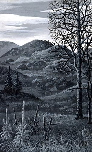 Mullein Grove in Thunder Mountains.jpg