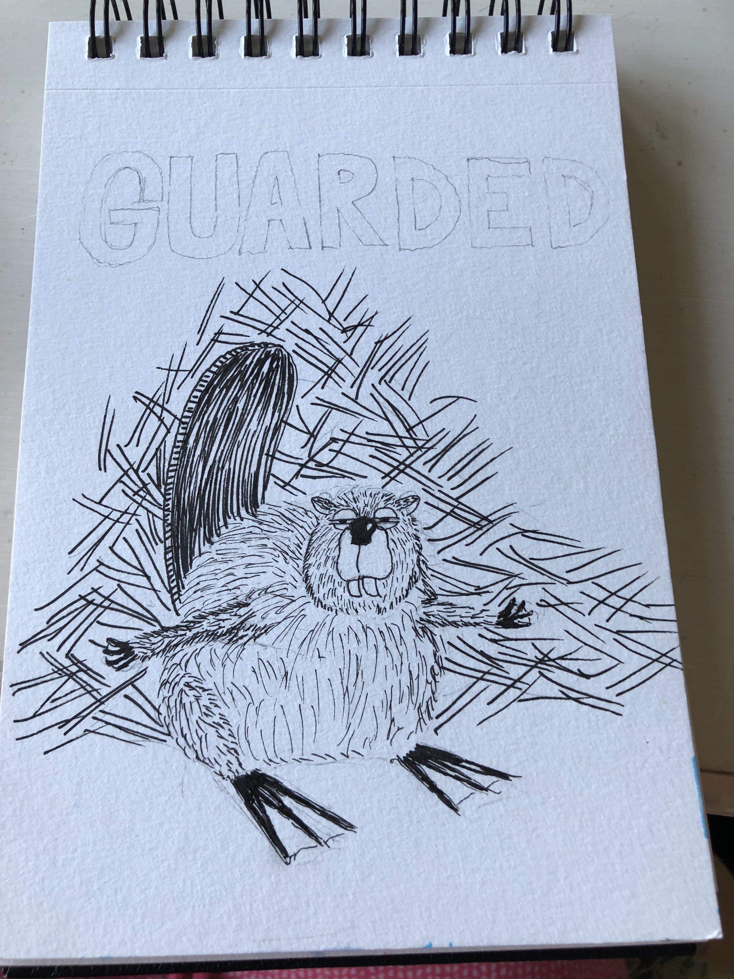 beaver pen.JPG