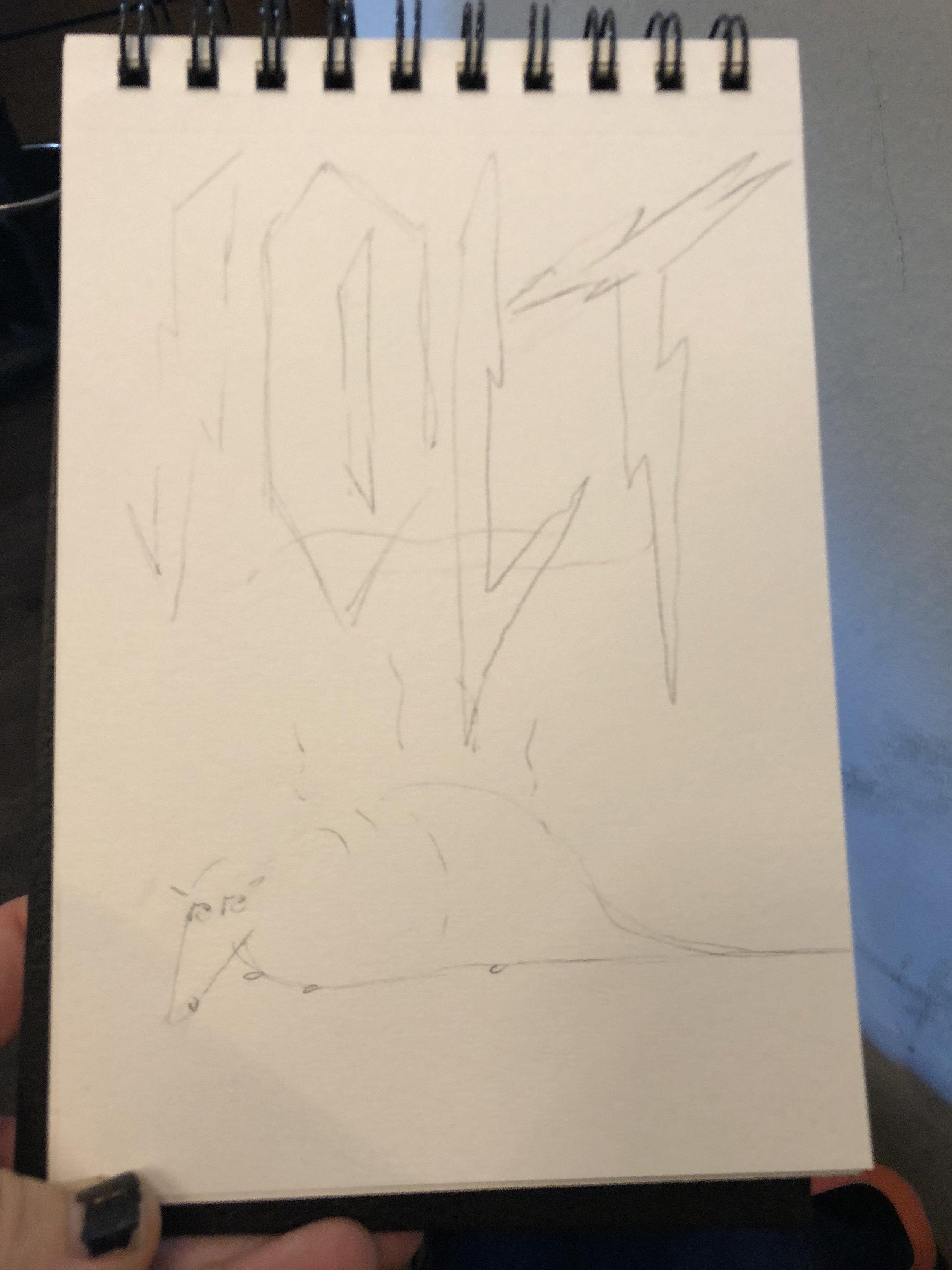 aardvarrk pencil.JPG