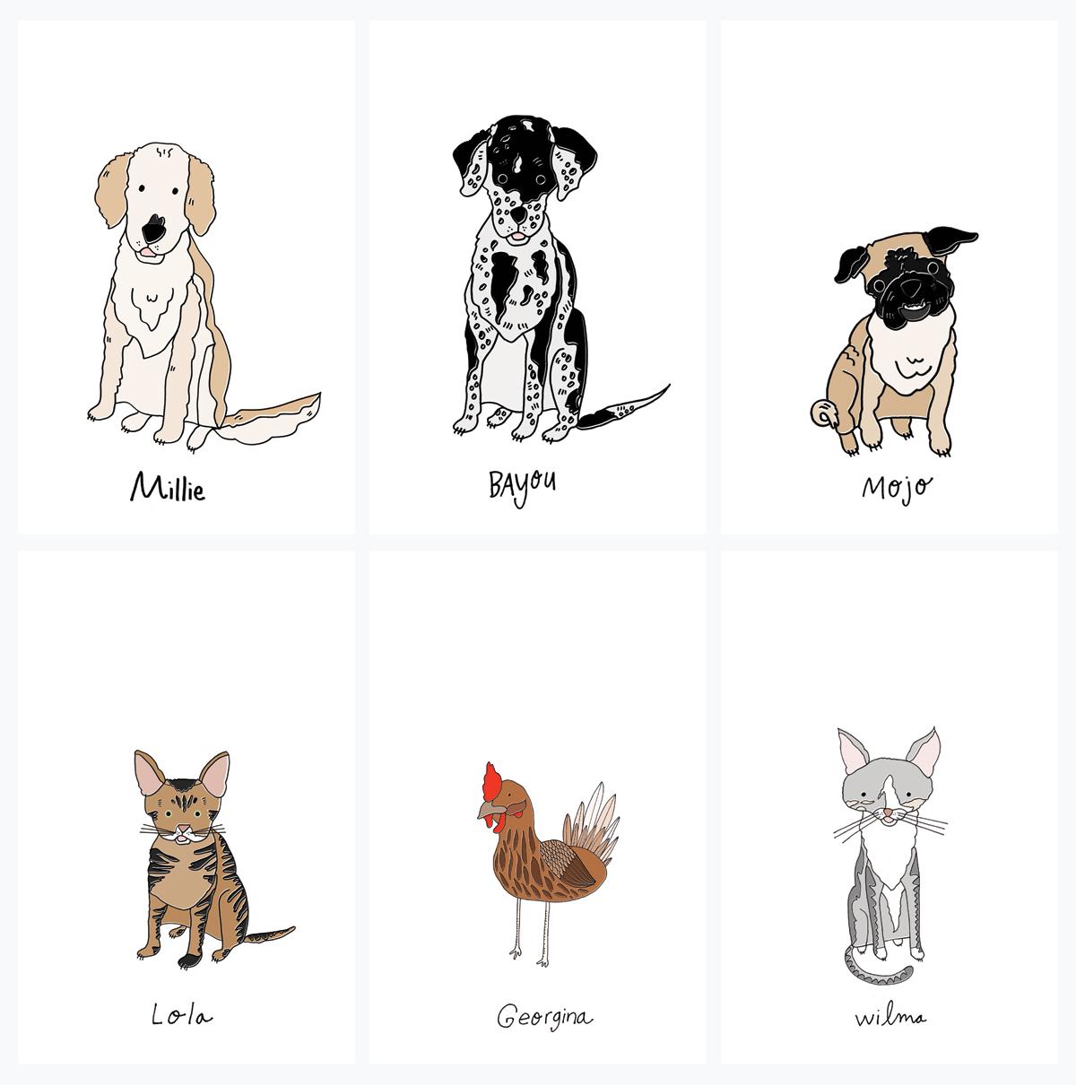 lmn pet doodle examples