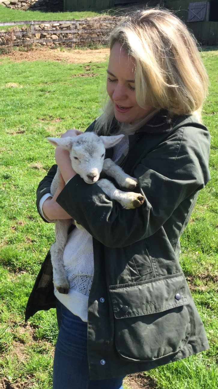 Mary, er, Kerry has a little lamb — at nearby Mt. Vernon Farm