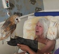 Echo the barn owl will fly to residents in their bed if they can't make it to the lounge.
