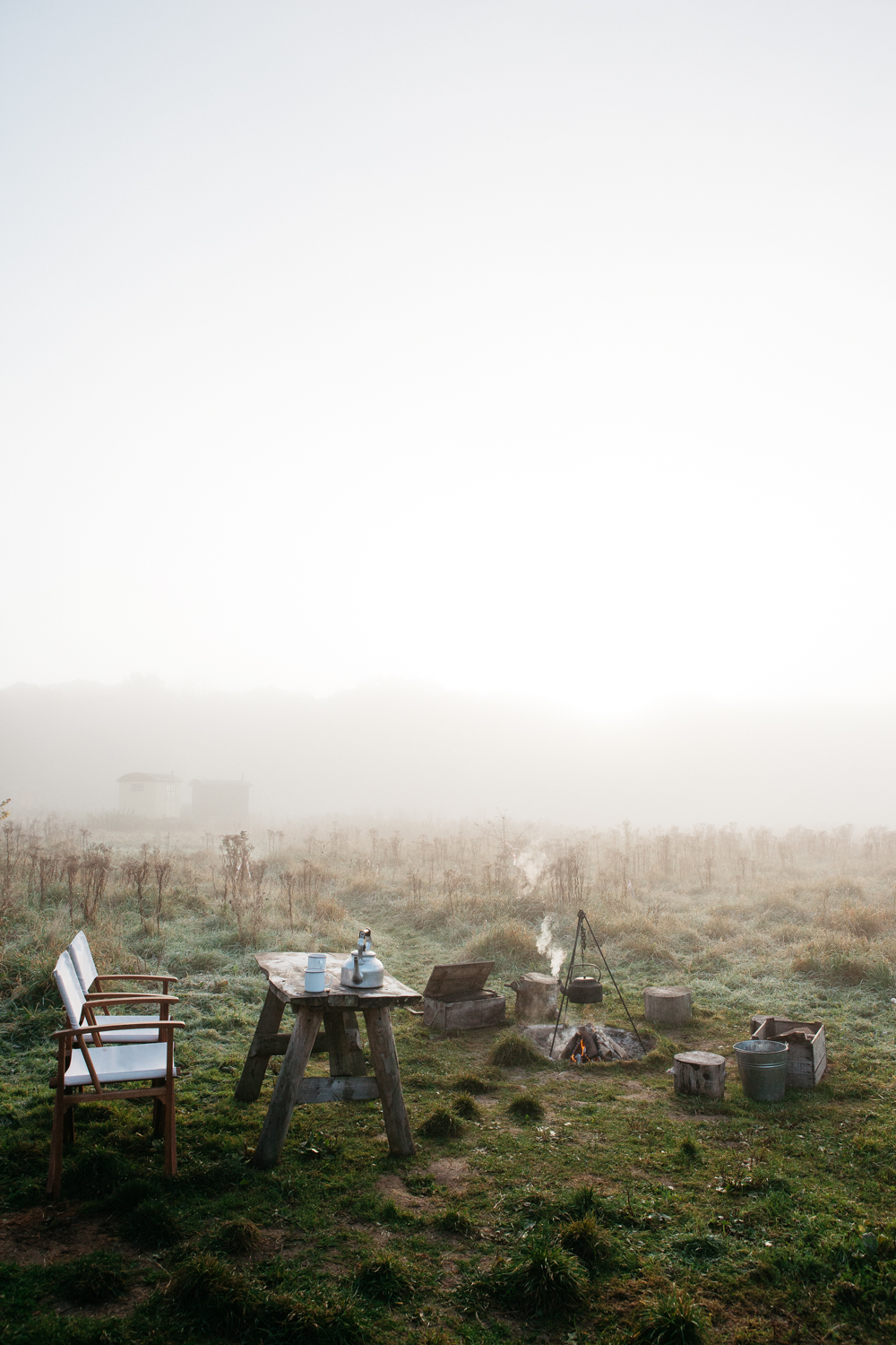 Misty Mornings at The Wriggly Tin
