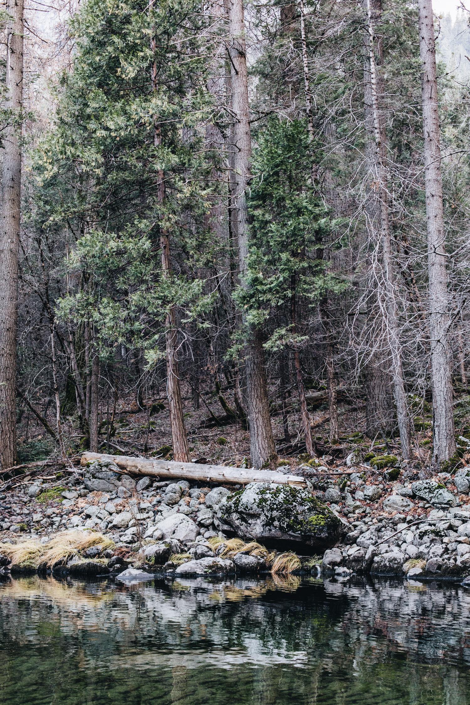 California Road Trip - Yosemite Valley