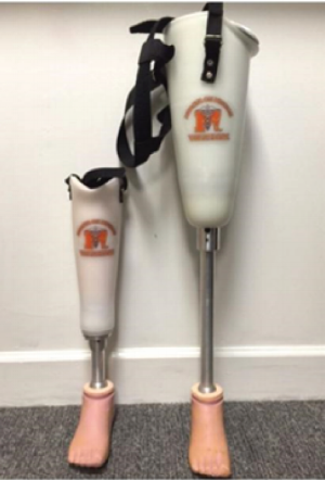 Figure 1.   Mercer Universal Prosthetic.  Transfemoral (right) and transtibial designs (left).