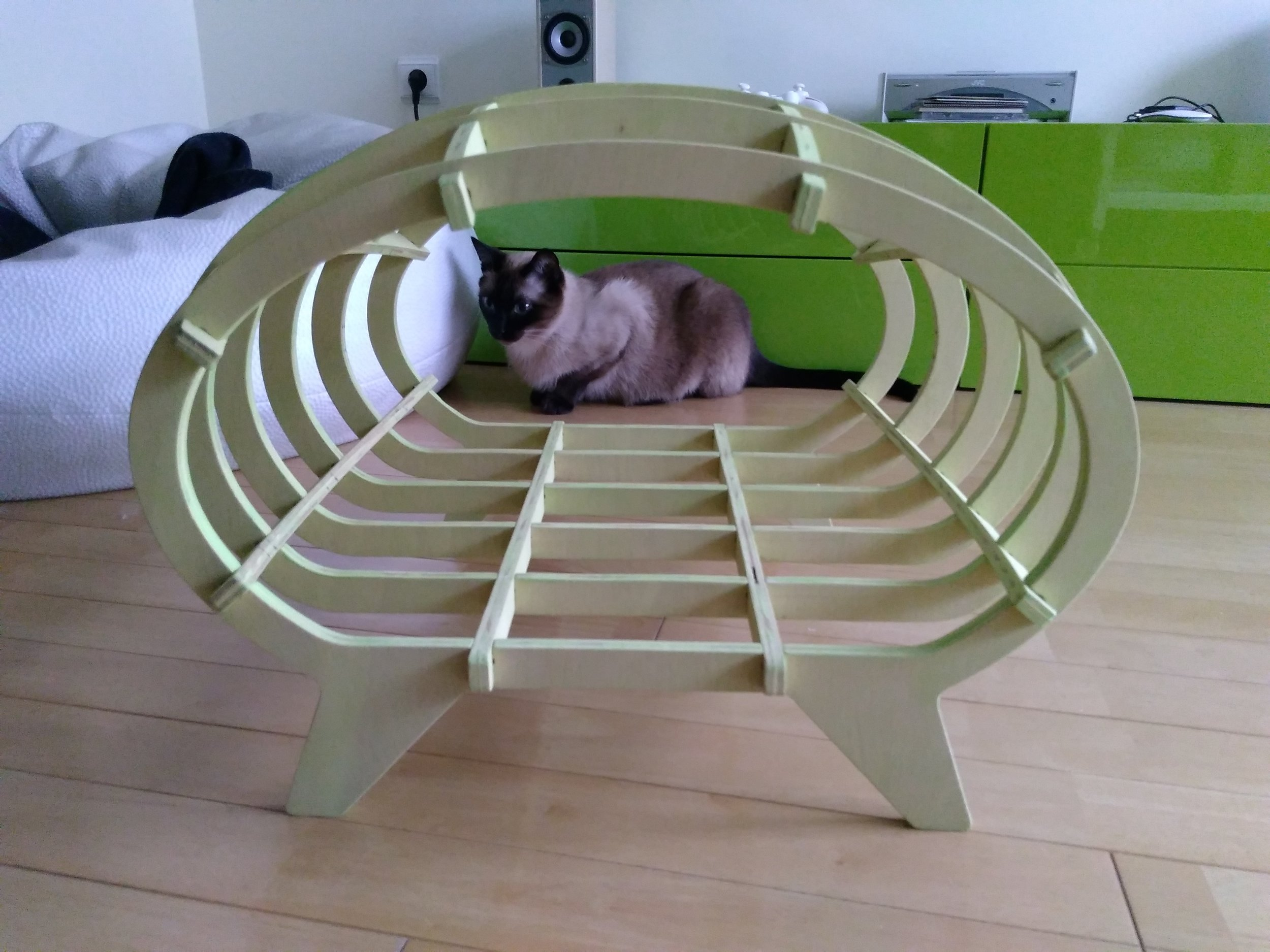 LuisP cat house 2.jpg