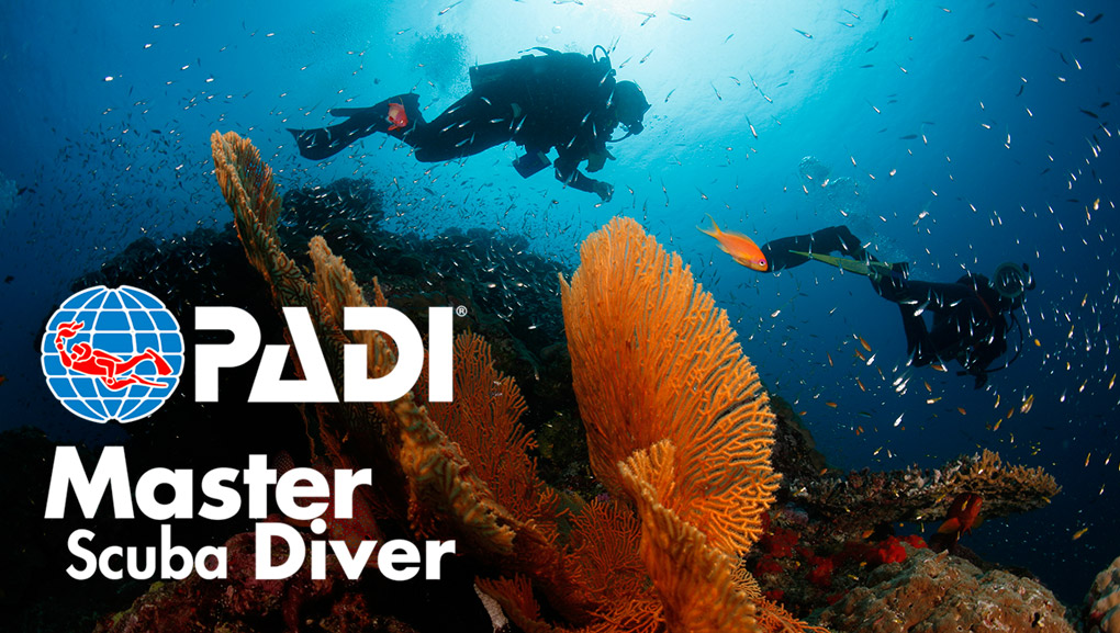 Master Scuba Diver - The Master Scuba Diver course places you in an elite group of divers who have earned this rating through both scuba training and experience. After completing this course people will recognize your superior achievement knowing you are a experienced diver.