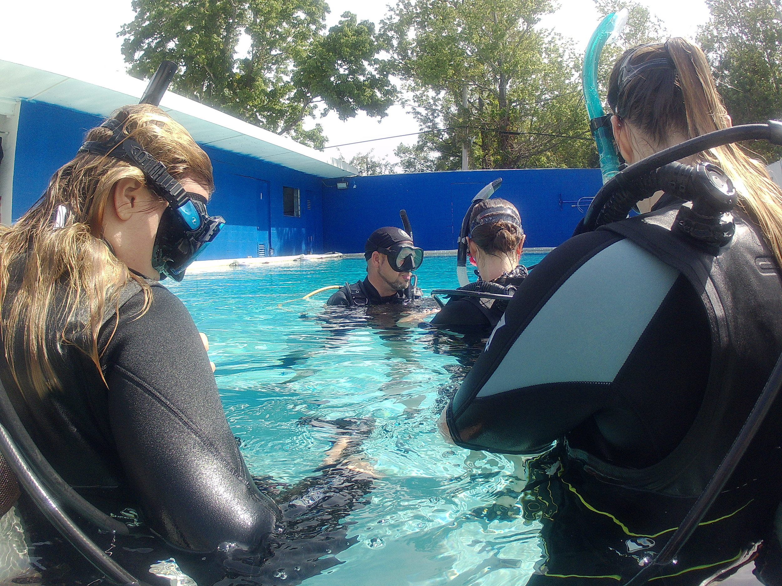 PADI Open Water Diver  - Open Water Diver is the first step into a new world underwater. This certification will allow you explore to maximum depth of 60ft. It will also allow you to purchase and rent life support equipment.