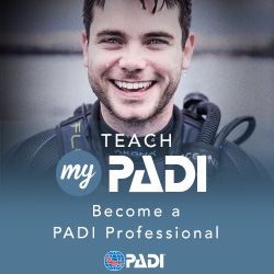 Professional Divemaster Program - From Open Water to Divemaster