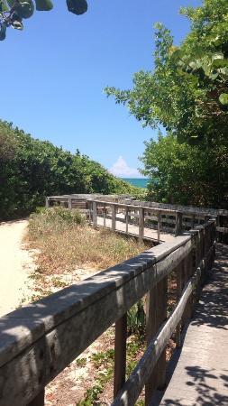 south-beach-park.jpg