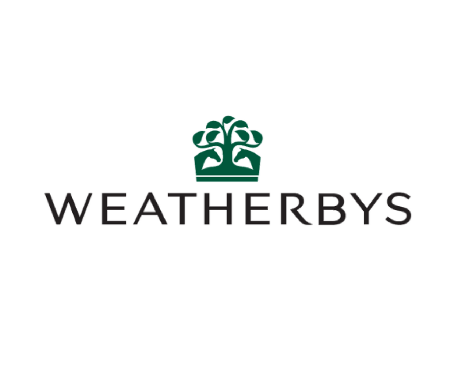 Wbys logo.png