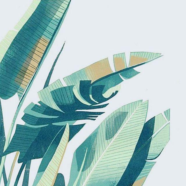 FANGIRL #leaf #leafcreate . . . . . . . #natural #naturalbeauty #naturegirl #holistic #organic #greenbeauty #green #beautybrands #branding #consultancy #PR #thrive #nourish #grow #synergy #ethical #partnership #wellness #business #sow #leaf #plantlove #plants
