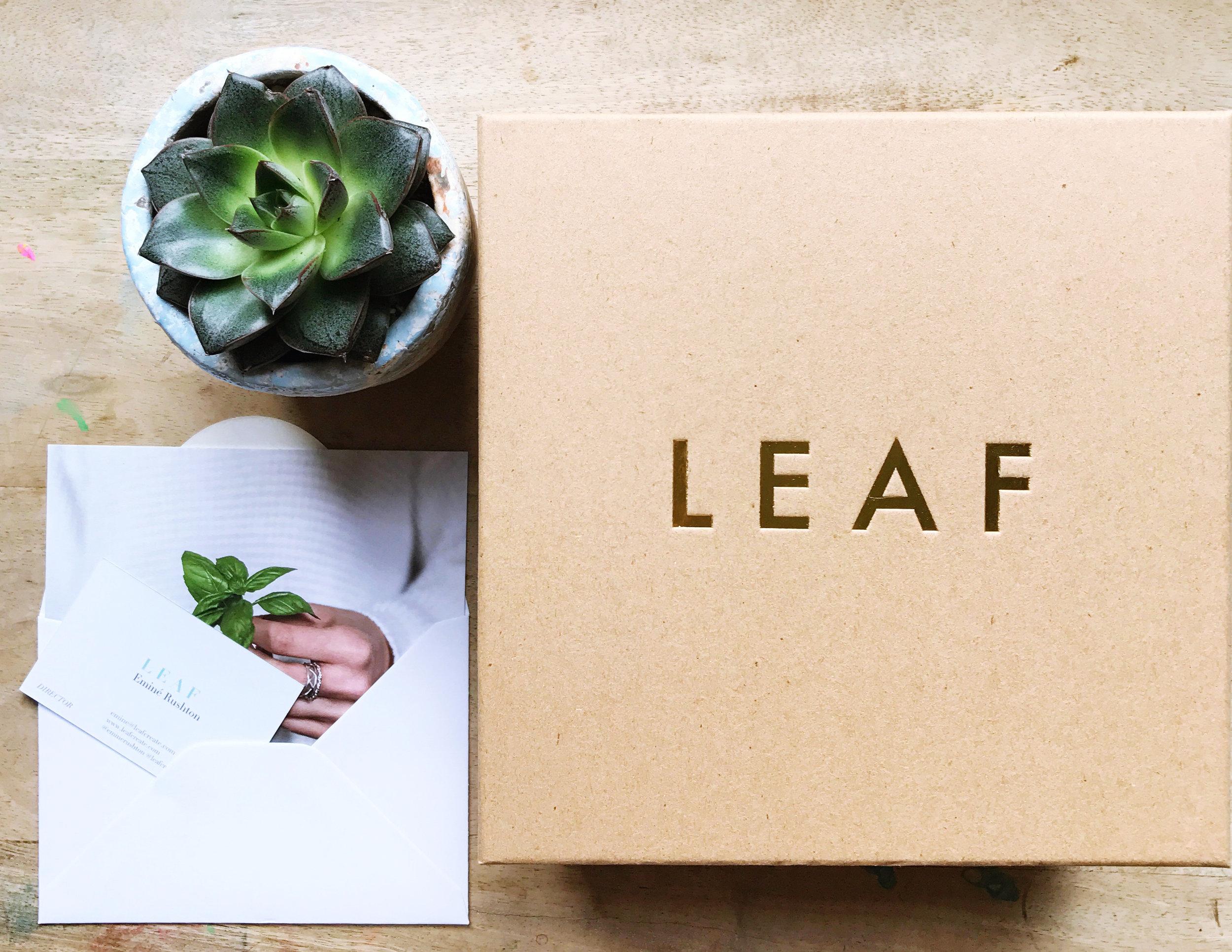 LEAF card + box + cactus.jpg