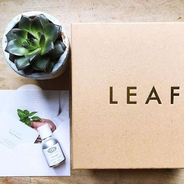 🌿Conscious Consultancy & Community - the 💚 of our business - which translates as thinking deeply about every decision we make, from our FSC-certified & fully recyclable/reusable packaging & stationery, to the beautiful brands we bring into our garden. We always ask: 1) Is it ethical? 2) Is it authentic? 3) Is it natural? 4) Is the way we choose to work healthy, sustainable, joyful? 5) Is it LEAF? . . . . . . #business #ethicalbusiness #eco #ecoconscious #worklifebalance #balance #work #natural #naturalbeauty #naturegirl #holistic #organic #greenbeauty #green #beautybrands #branding #consultancy #PR #thrive #nourish #grow #leaf #leafcreate #consciousliving #consciousbusiness #supportsmallbusiness
