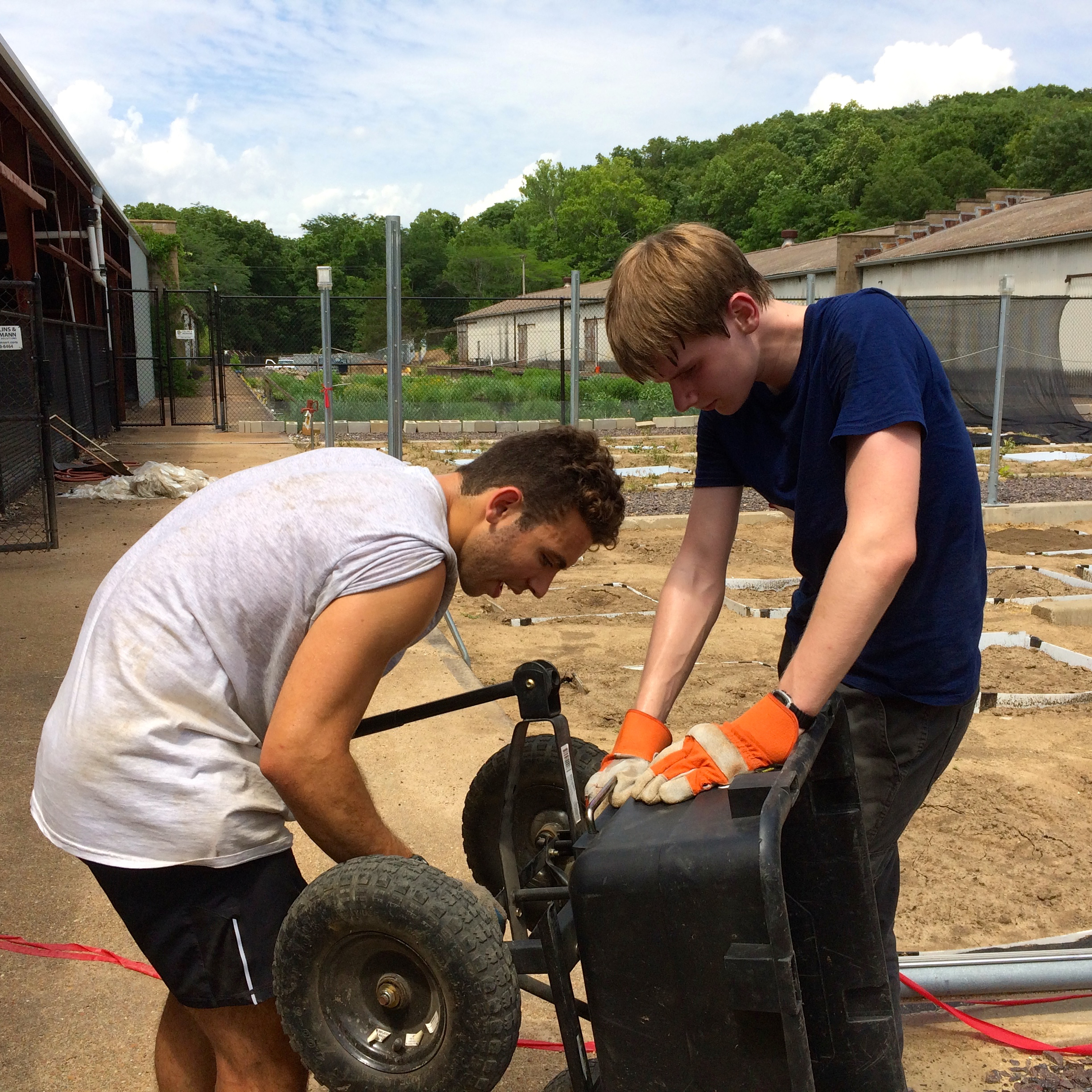 Daniel (right) is helping WashU undergraduate Ivan (left) repair the axle of a wheelbarrow so they can transport sterilized soil to the research garden. The Natural Enemies team is setting up a new experiment for WashU PhD candidate Rachel Becknell.