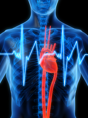 see-through-man-with-heartbeat.png