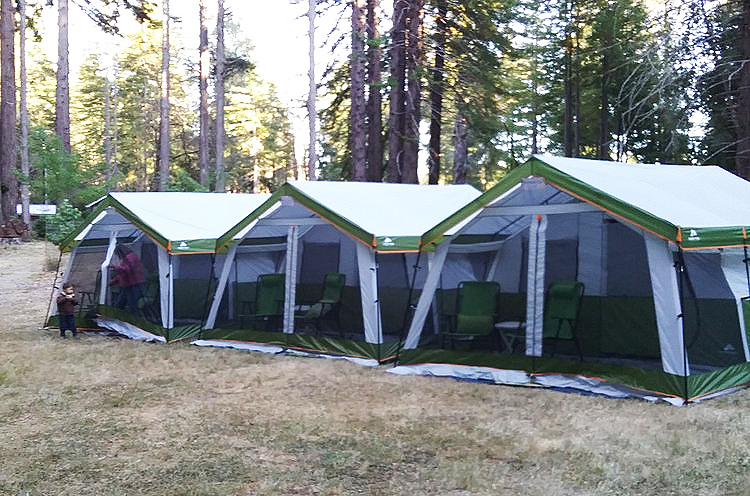 tent-3-cropped.jpg