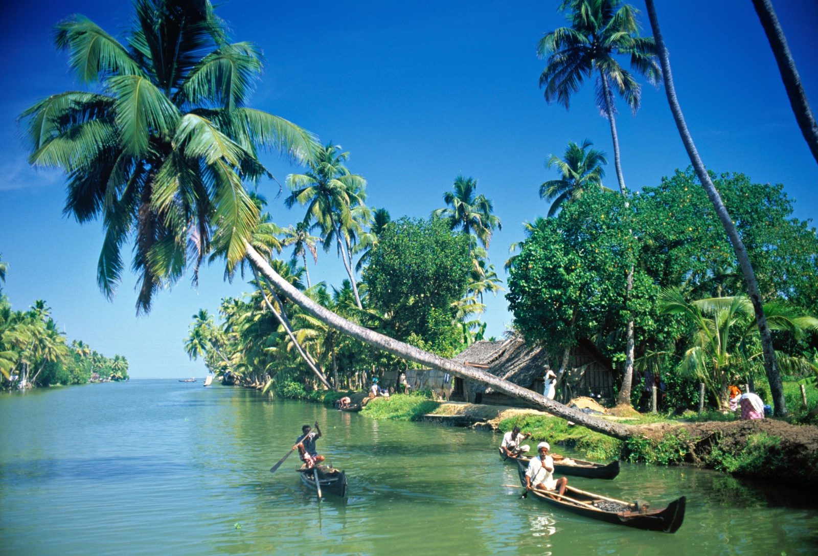 India - Magiske Kerala - gudenes hage