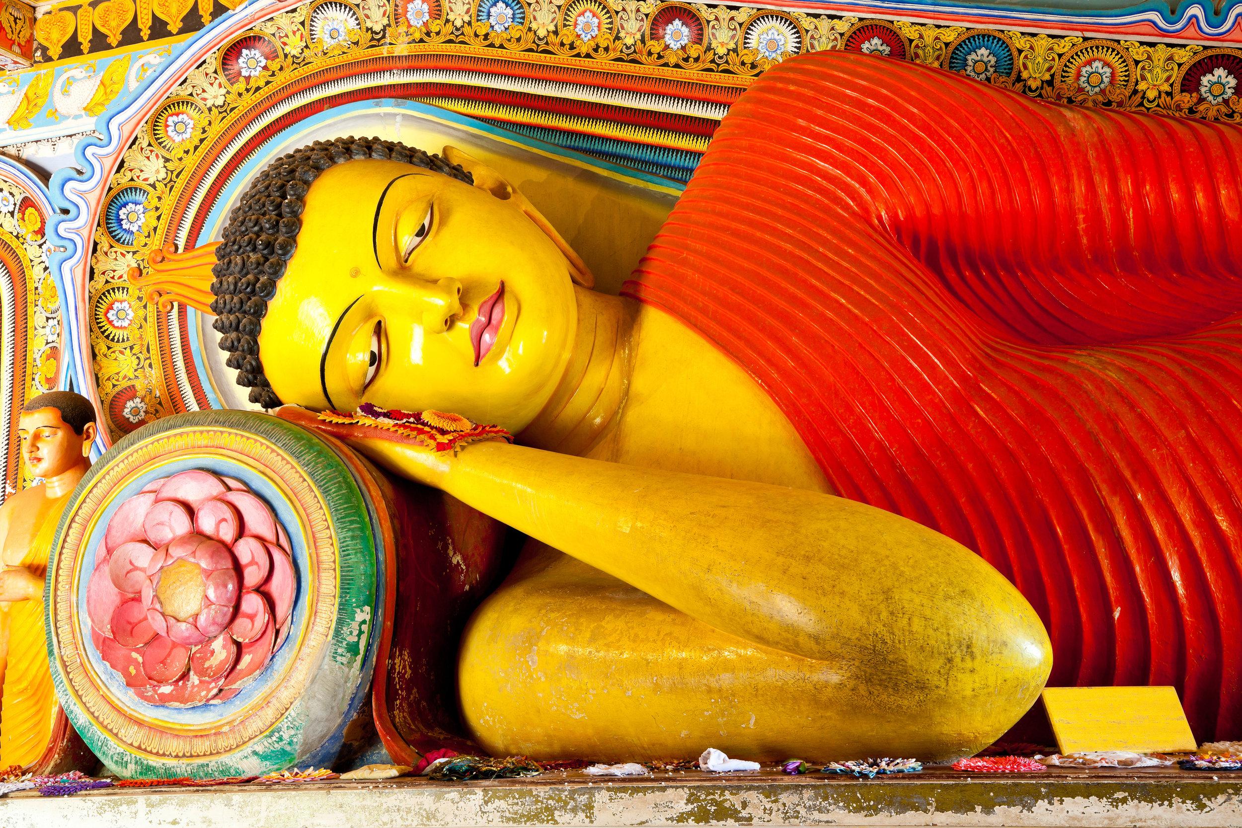 The best of Sri Lanka - Spirituelt, historisk, kulturelt og paradisisk
