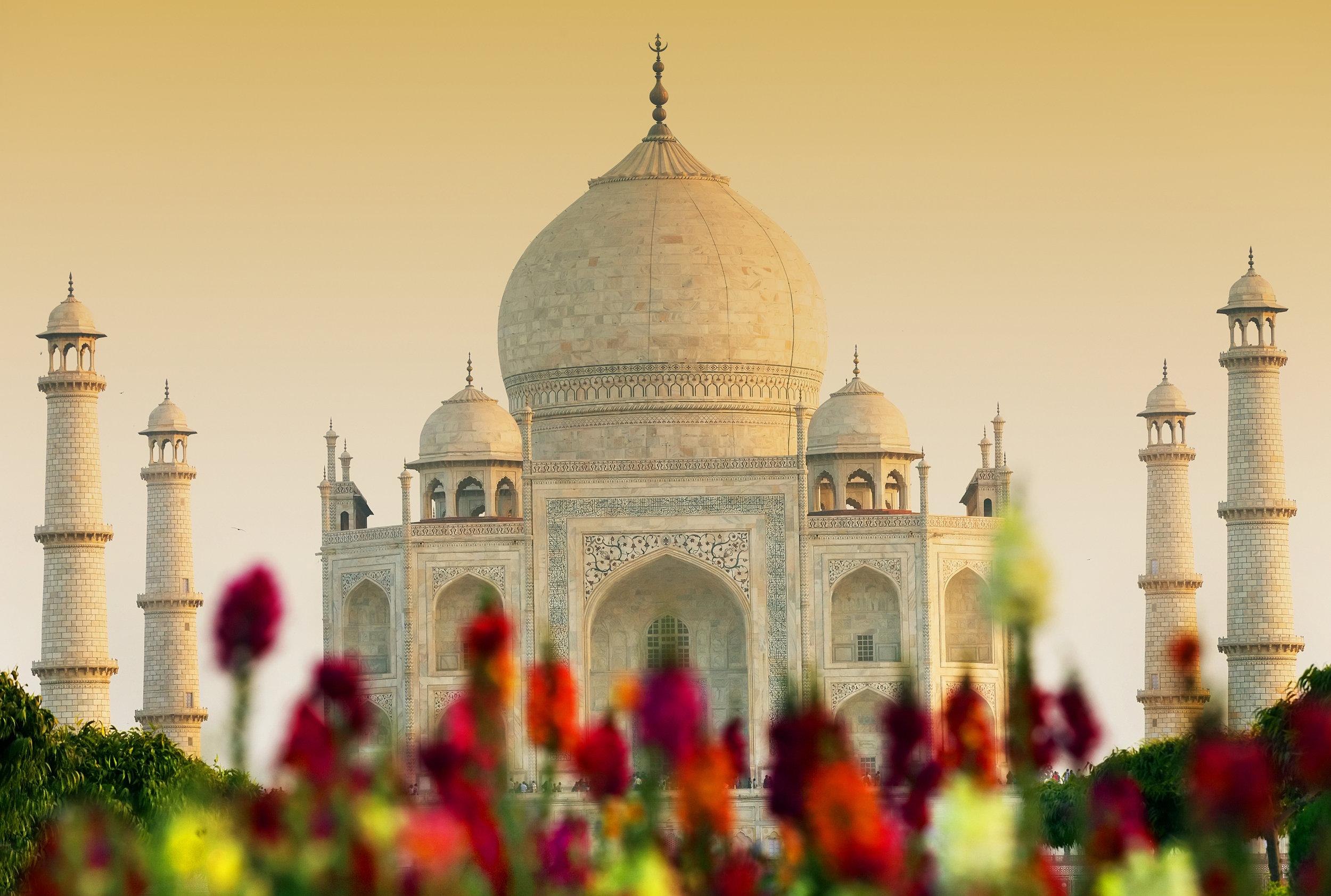 India - historier og kulturskatter - indias gyldne triangel